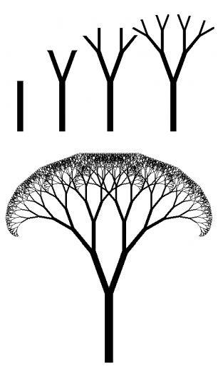 """Ricerca di un canone estetico naturale come metafora della """"bellezza oggettiva"""", ottenendo il ritmo della complessità. Analisi dello sviluppo di geometrie frattali degli alberi, tramite formule matematiche. ____ Research of a natural aesthetic standard as a metaphor for """"objective beauty"""", getting the rhythm of complexity. Analysis of the development of fractal geometries of the trees, through mathematical formulas."""
